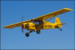 Piper_Cub_Day-2_MicroWings_Cubby_ZU-CYB_Omer_Mees-03