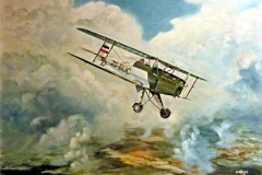 Aviation_artist_JLPC_Baragwanath_Alan_Hindle_painting_Bucker_Jungmann_ZS-BUC.jpg