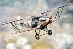 Aviation_artist_JLPC_Baragwanath_Alan_Hindle_painting_Hawker_Hart