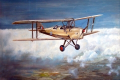 Aviation_artist_JLPC_Baragwanath_Alan_Hindle_painting_de_Havilland_DH82A_Tiger_Moth_SAAF-02