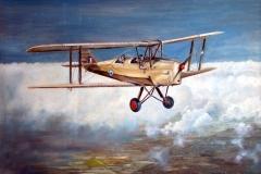 Aviation_artist_JLPC_Baragwanath_Alan_Hindle_painting_de_Havilland_DH82A_Tiger_Moth_SAAF-02