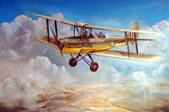 Aviation_artist_JLPC_Baragwanath_Alan_Hindle_painting_de_Havilland_DH82A_Tiger_Moth_SAAF