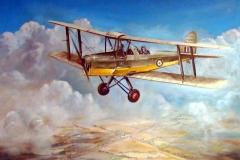 Aviation_artist_JLPC_Baragwanath_Alan_Hindle_painting_de_Havilland_DH82A_Tiger_Moth_SAAF