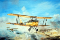 Aviation_artist_JLPC_Baragwanath_Alan_Hindle_painting_de_Havilland_DH82A_Tiger_Moth_SAAF_No_1_EFTS_Baragwanath_1942