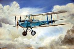 Aviation_artist_JLPC_Baragwanath_Alan_Hindle_painting_de_Havilland_DH82A_Tiger_Moth_ZS-ABM