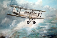 Aviation_artist_JLPC_Baragwanath_Alan_Hindle_painting_de_Havilland_DH82A_Tiger_Moth_ZS-BXA