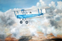 Aviation_artist_JLPC_Baragwanath_Alan_Hindle_painting_de_Havilland_DH82A_Tiger_Moth_ZS-CTN