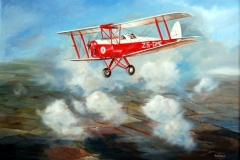 Aviation_artist_JLPC_Baragwanath_Alan_Hindle_painting_de_Havilland_DH82A_Tiger_Moth_ZS-DMC