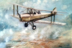 Aviation_artist_JLPC_Baragwanath_Alan_Hindle_painting_de_Havilland_DH82A_Tiger_Moth_ZS-FZF