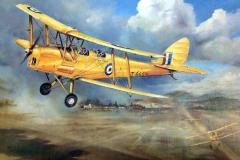 Aviation_artist_JLPC_Baragwanath_Alan_Hindle_painting_de_Havilland_DH82A_Tiger_Moths
