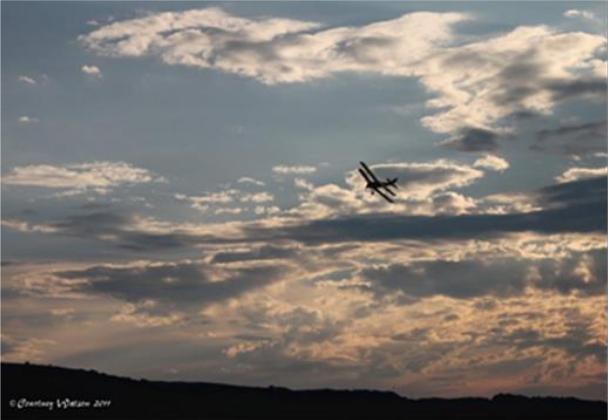 Aviation stories by Courtney Watson